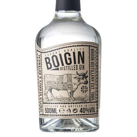 Boigin